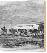 Gauchos, 1858 Wood Print