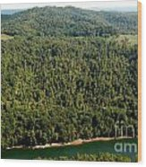 Gauley River Aerial View Wood Print