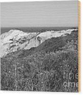 Gay Head Lighthouse With Aquinna Beach Cliffs - Black And White Wood Print