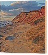 Gayhead Cliffs Marthas Vineyard Wood Print