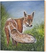 Gazing Fox Wood Print