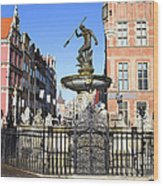 Gdansk Old City In Poland Wood Print