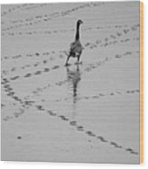 Geese Wood Print by All copyrights reserved by Harris Hui