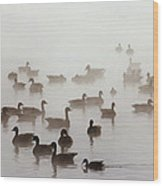 Geese And Ducks In A Placid Lake Wood Print