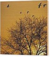 Geese At Sunrise Wood Print