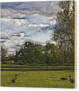 Geese On Painted Green 2 Wood Print