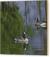 Geese On The Pond Wood Print