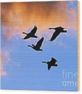 Geese Silhouetted At Sunset - 1 Wood Print