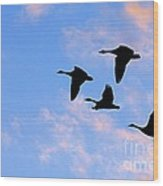 Geese Silhouetted At Sunset - 2 Wood Print