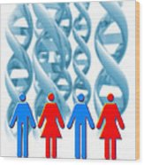 Genetic Sexuality Wood Print by Victor Habbick Visions