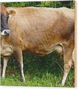Gentle Cow Wood Print