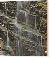 Gentle Waterfall In Glacier National Park Wood Print