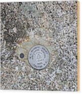 Geological Marker Wood Print