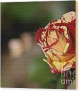 George Burns Rose Wood Print