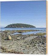 Georgeson Island Wood Print