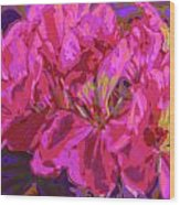 Geranium Pop Wood Print