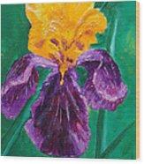 German Iris Wood Print