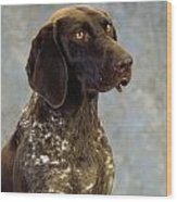 German Pointer Portrait Of A Dog Wood Print