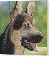 German Shepard Puppy Wood Print