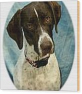 German Shorthaired Pointer 088  Wood Print