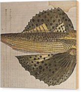 Gesner Flying Fish Old Illustration Wood Print