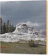 Geyser In Yellowstone Wood Print