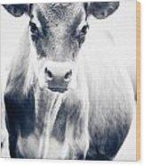 Ghost Cow 1 Wood Print