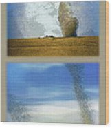 Giant Dust Devils Diptych Wood Print
