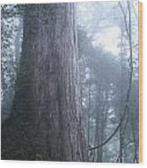 Giant In Fog Wood Print