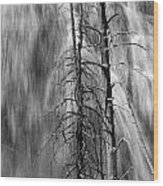 Gibbons Falls In Yellowstone National Park Wood Print