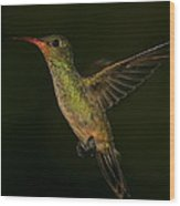 Gilded Hummingbird In Flight Wood Print