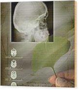 Ginkgo In Medicine Wood Print