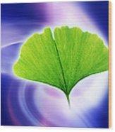 Ginkgo Leaf Wood Print by Pasieka