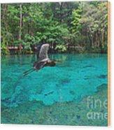 Ginnie Springs Wood Print