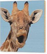 Giraffe Calling Wood Print