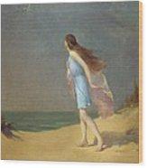 Girl On The Beach  Wood Print by Frank Richards