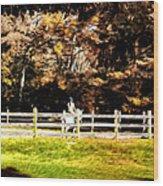 Girl Riding Horse Wood Print