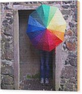 Girl With The Rainbow Umbrella At Mussendun Hall Wood Print