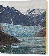 Glacial Bay And Ice Wood Print by Mike Reid