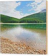 Glacial Black Lake In Durmitor  Wood Print