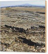 Glacial Rock Wood Print