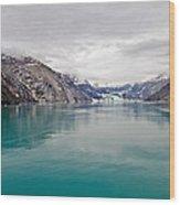 Glacier Bay National Park Wood Print