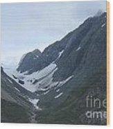 Glacier Bay Slopes Wood Print