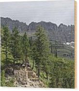 Glacier Nat Park Wood Print