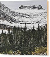 Glacier Park Bowlrock Wood Print