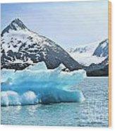 Glacier Remnants Wood Print