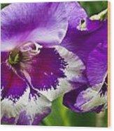 Gladiola Blossom 2 Wood Print