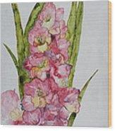 Gladiolas Wood Print by Patsy Sharpe