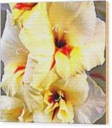 Gladiolus Mirage Wood Print