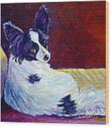 Glamor - Papillon Dog Wood Print